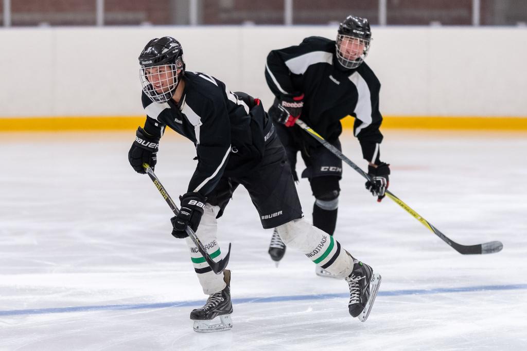Vill du träna ännu mer fotboll, ishockey, konståkning eller aerobics och dessutom träna på dagtid? På Söderslättsgymnasiet kan du välja mellan fyra lokala idrottsutbildningar.
